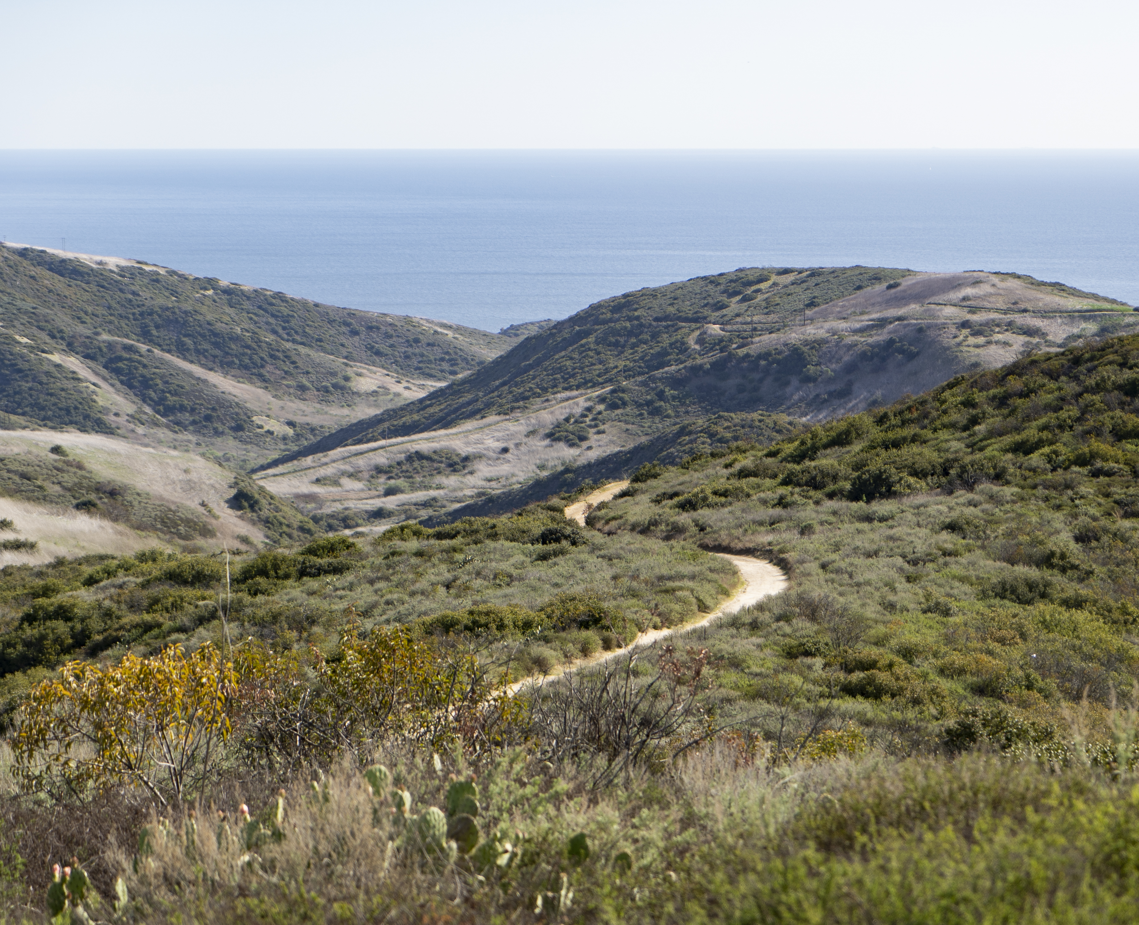 E Coastal Peak (1)