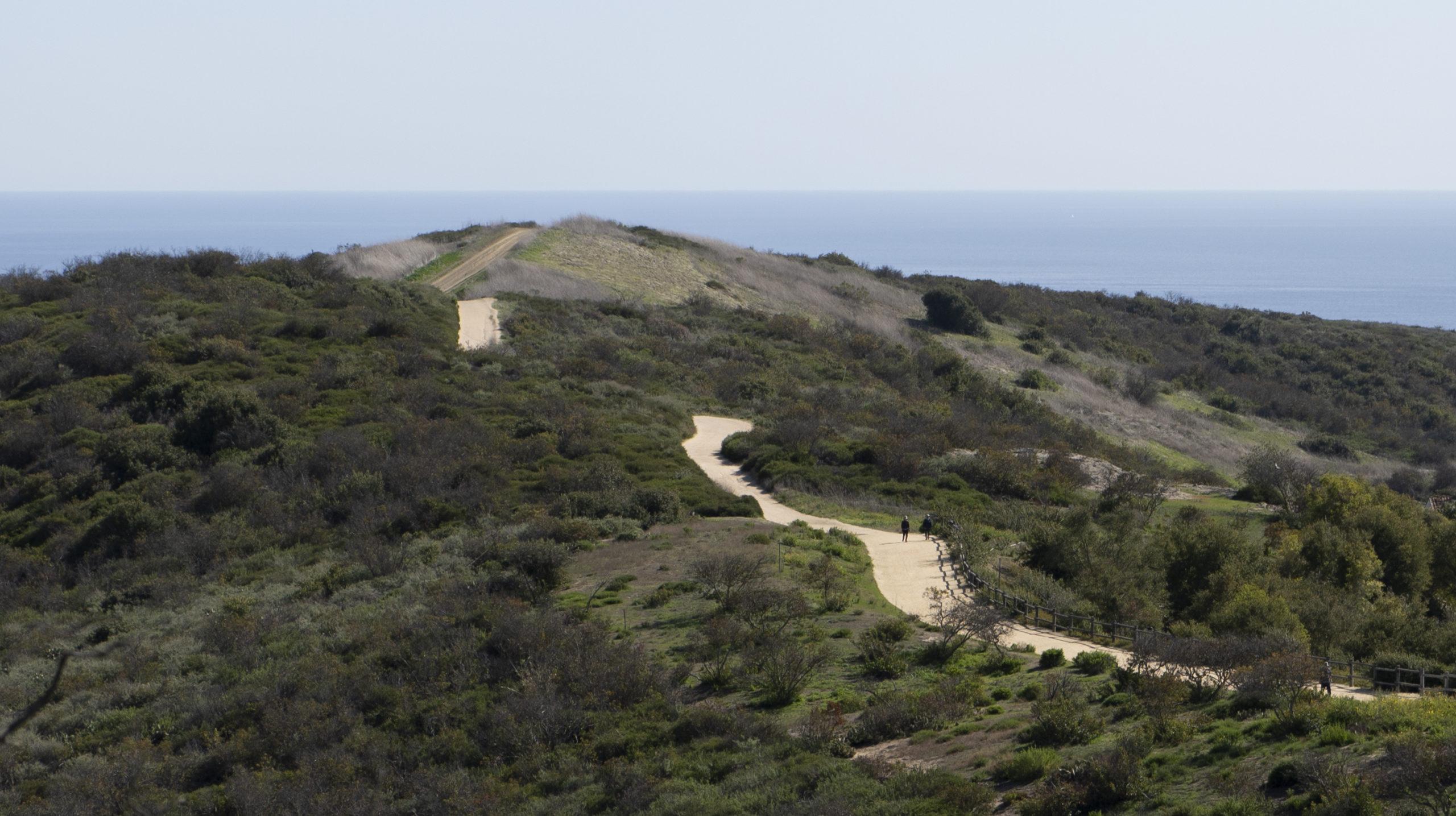 E Coastal Peak